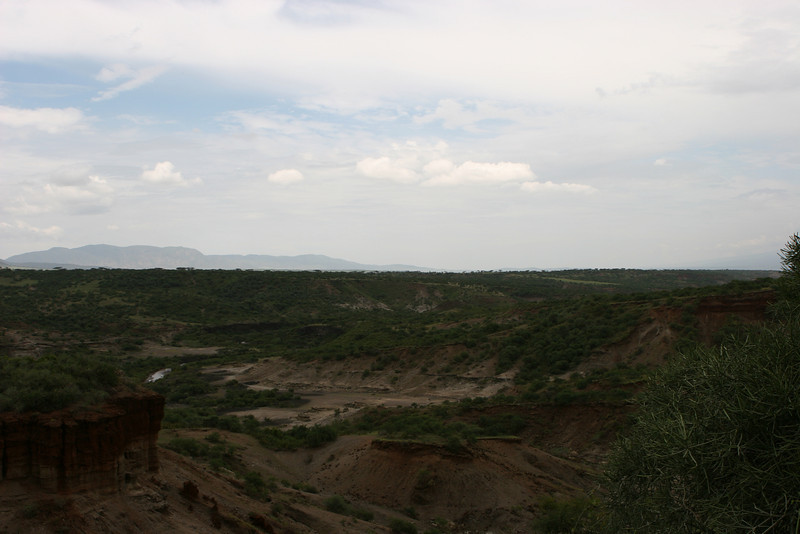 Oldupai (Oldevia) Gorge from the museum building to the southeast.