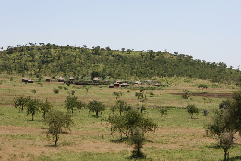 Masi houses along route B 144 between Makuyni and Mta Wa Mbu (near Lake Manyara), Tanzania.