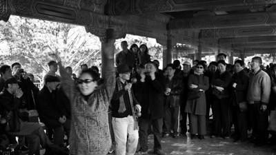 Harmonica Harmonics, Tiantan Park, Beijing