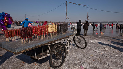Frozen Fruit, Songhua River, Harbin, Heiliongjiang Province, China
