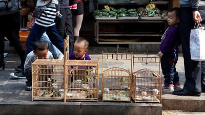 Three Little Boys, Beiyuanmen, Muslim Quarter, Xian
