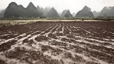 Fresh Tracks, Yulong Valley