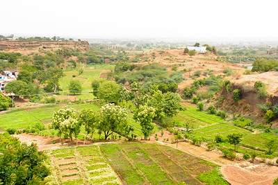 08IB475 Bidar Fort Farms Fort India Karnataka Plain