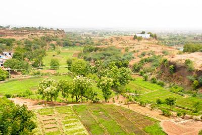 08IB475 Bidar Fort Farms Fort India Karnataka Plain