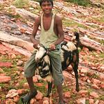 06IP393 Bijaipur Full Body Goatherds India Individuals Kids Occupations Portraits Rajasthan Work
