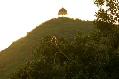 06IP338 Bundi Golden Hour India Landscapes Light Rajasthan