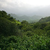 06IP437 India Jungle Rajasthan Udaipur Valley