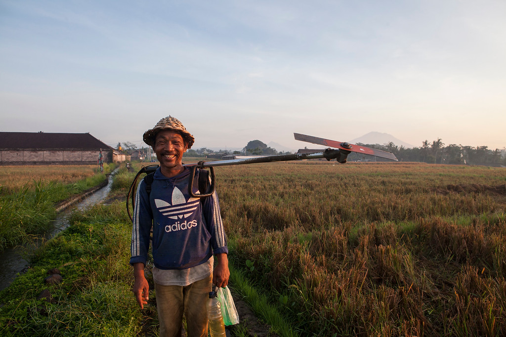 The Happy Farmer, Lotunduh, Bali