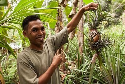 Fresh Cut Pineapple, Tenganan, East Bali