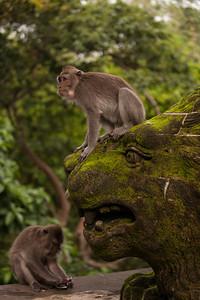 Monkey Forest, Stone Lion, Ubud, Bali