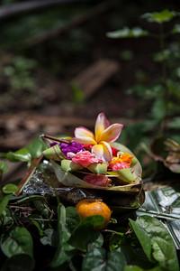 Canang Sari, Goa Gajah, Bali, Ubud