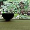 07JP308 Buddhism Drink Japan Kansai Kyoto Nanzenji Temple