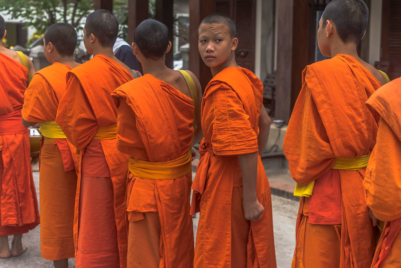 Buddhist Alms Giving Ceremony