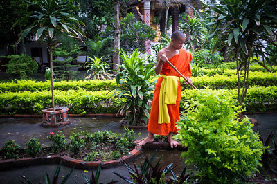 After the alms collection procession, the monks start their daily chores, Luang Prabang