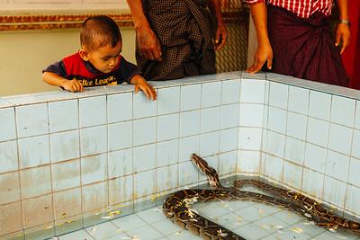 Hmwe Paya, Snake Pagoda, Mandalay