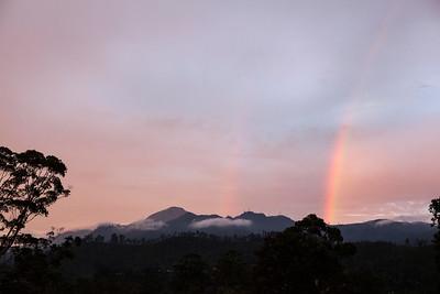 Rainbow, Ella