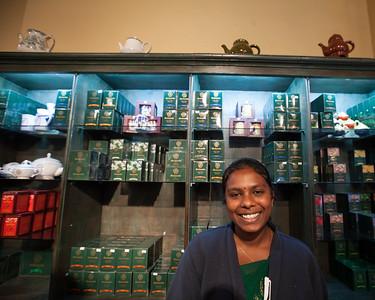 Mackwoods Tea Plantation, Labookellie, Nuwara Eliya
