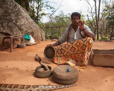Snake Charmer, Sigiriya