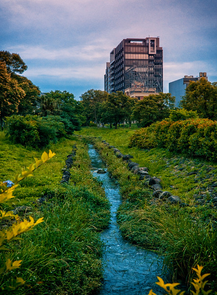 trace of nature in Hsinchu