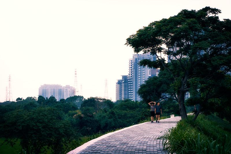 paths along Touqian River