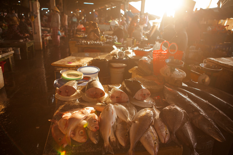 The Day's Catch, Hoi An