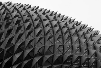 hedgehog roof