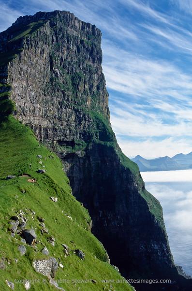Kalsoy cliffs