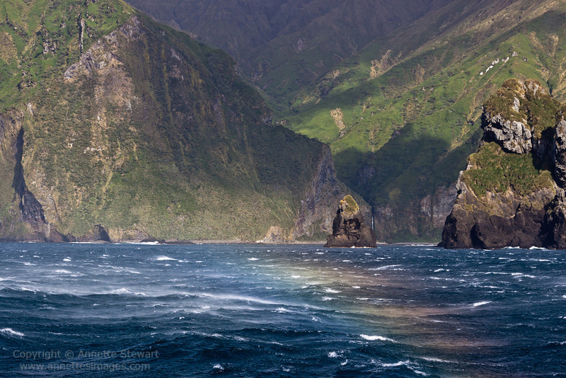 Gough Island, in a gale