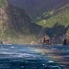 Gough Island, in a gale
