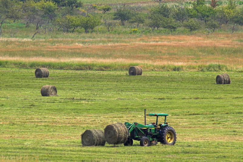 Bringing in the Hay, Auburn, Maine