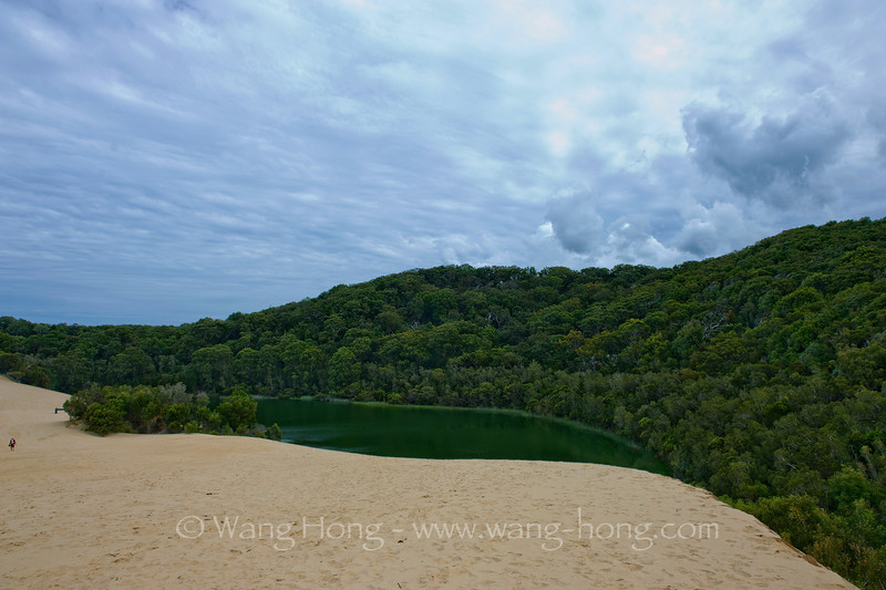 Lake Wabby, the deepest lake on Fraser Island, at 12 metres (39 ft) in depth and also the least acidic which means it has the most aquatic life of all the lakes.