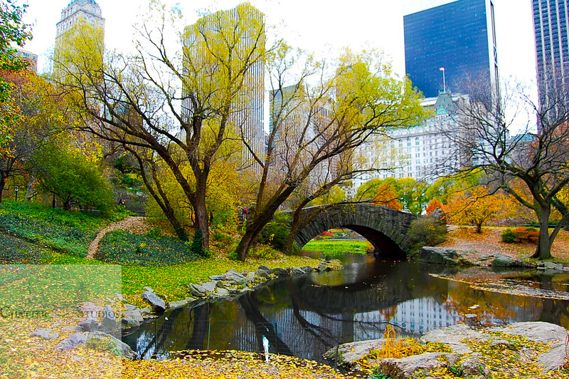 Lovely Romantic Bridge in New York .  This Image is © Tricia Chatterton Goldrick/Chattergold Studios.  All Rights Reserved.  No duplication without permission (see commercial downloads).  This image may be downloaded from this website for blogging purposes only.