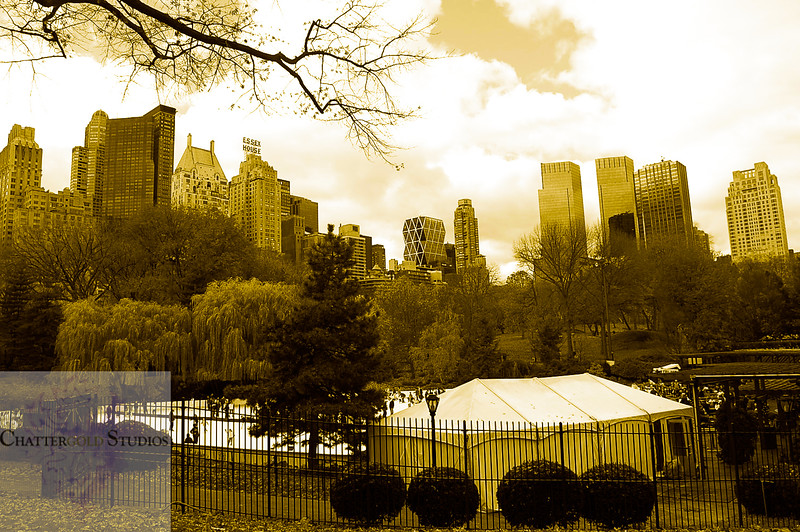 View from Central Park of upper west side. .  This Image is © Tricia Chatterton Goldrick/Chattergold Studios.  All Rights Reserved.  No duplication without permission (see commercial downloads).  This image may be downloaded from this website for blogging purposes only.
