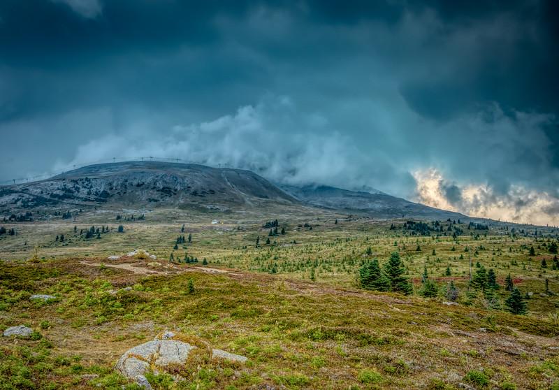Sunshine Meadows Thunderstorm