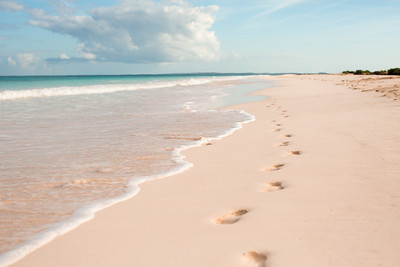 Footprints on Pink Sand Beach, Harbour Island, Bahamas