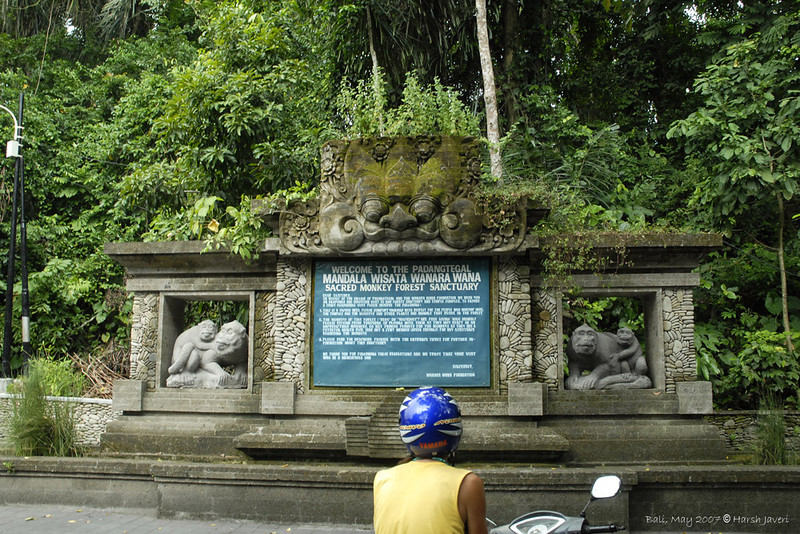 Entrance to the Monkey Forest