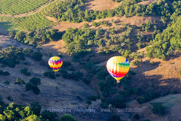 Flight over Napa Valley