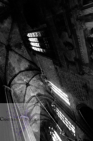 Black and white Beautiful ceilings in the Cathedral of Barcelona The Cathedral of Barcelona