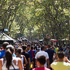 The Crowds on La Rambla