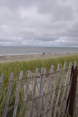 Barnstable dunes