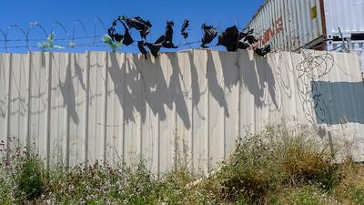 Fence Detritus
