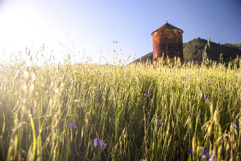 Mt. Diablo Water Tower