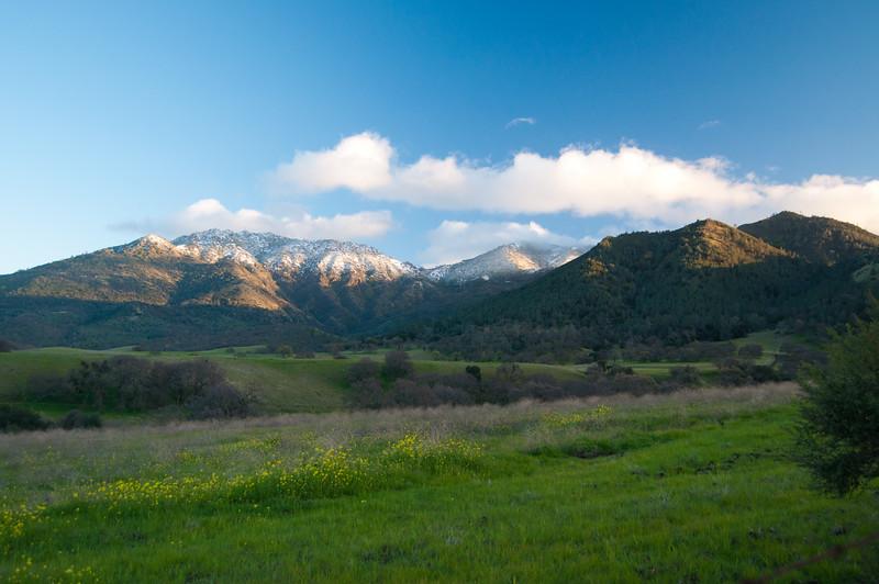 Mt Diablo Snow