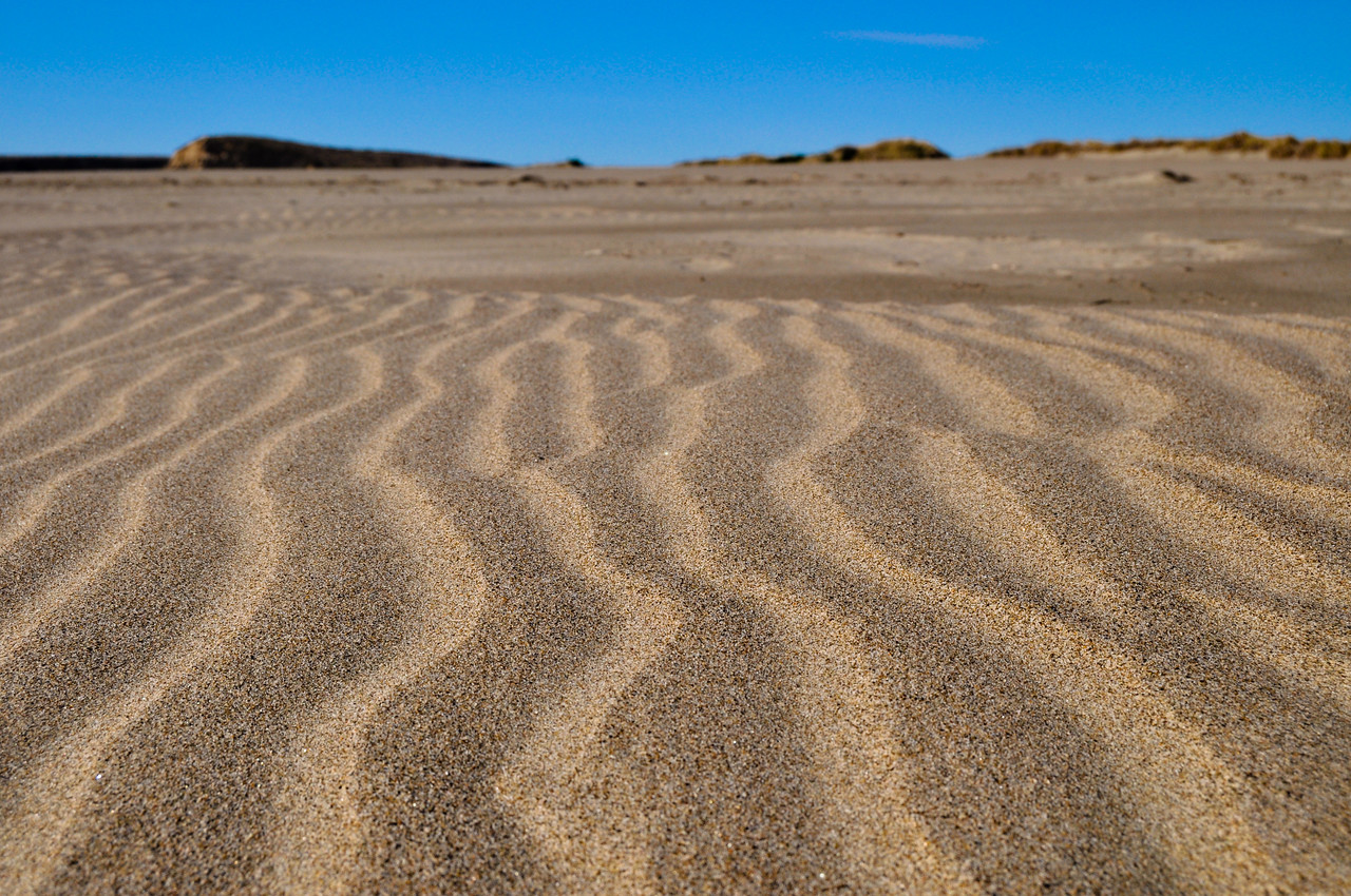 Point Reyes sand dunes.