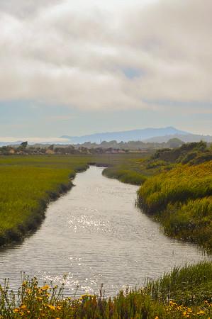 San Francisco Bay Trail July 30, 2014