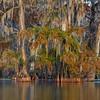 Tenting the Bayou