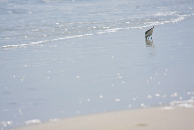 110821_Beach_14