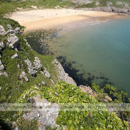 Barafundle Beach.