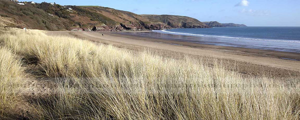 The Burrows, Freshwater East.