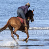 Exercising horses, Broadhaven North Beach.